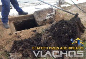 Τεχνικός της Αποφράξεις Βλάχος στα Καλύβια βγάζει ρίζες από το φρεάτιο