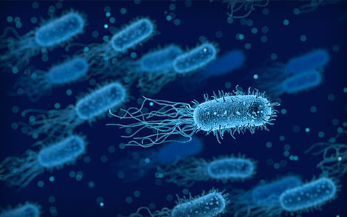 Μικροβιοκτονια