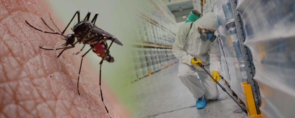 Απολύμανση για κουνούπια