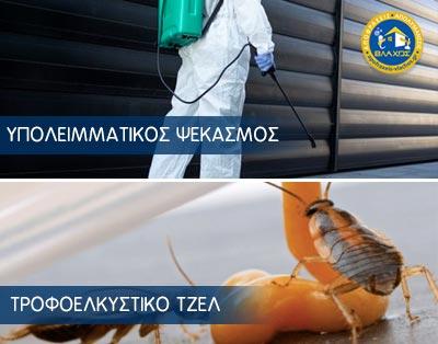 Απολύμανση για κατσαρίδες - Μέθοδοι